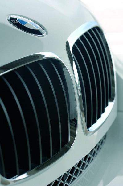2008 BMW X6 grille